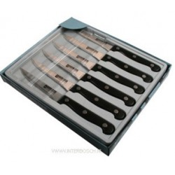 steakmessen set 6 dlg box